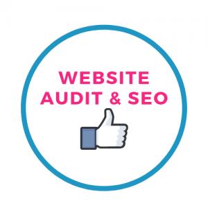 Website & SEO Audit